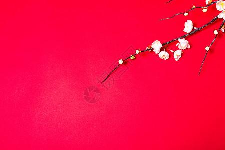 春节新年桃花背景图片