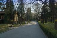 冬天北京某公园的景色图片