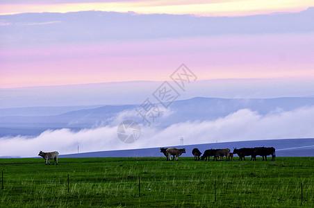 新疆塔城风光牧场日落火烧云红云彩云图片
