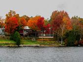 加拿大小镇的红叶图片