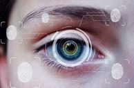 虹膜识别图片