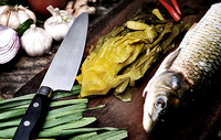 酸菜鱼食材图片