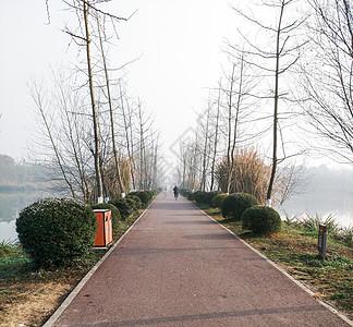 公园内的路图片