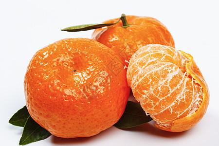 小橘子图片
