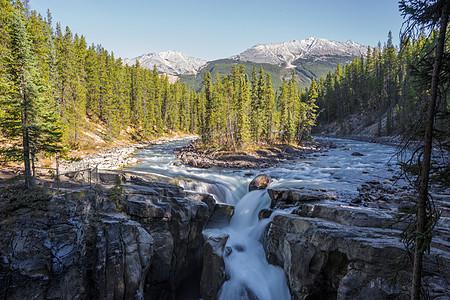 班芙国家公园瀑布图片