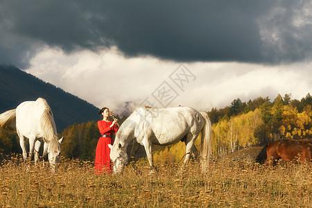 牵马的女孩图片
