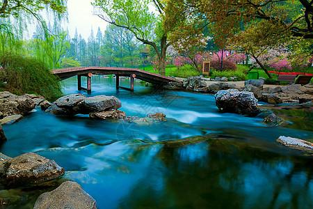 一池春水流图片