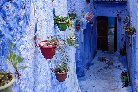 摩洛哥舍夫沙万蓝色小镇图片