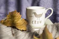 桌上的水杯树叶和毛衣图片