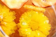 菊花茶 场景图图片