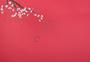 新春桃花红色背景图片