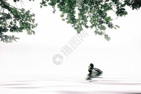 中国风韵味水墨山水素材图片