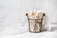 白玉菇图片