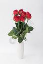 情人节的玫瑰花500790915图片
