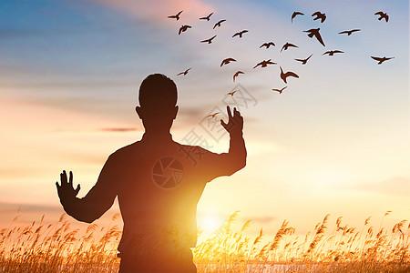 夕阳下草地上放飞鸽子图片