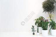 清新简洁的室内空间背景图片