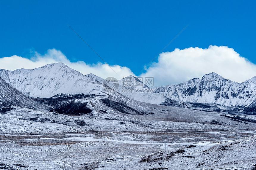 雪山中的公路图片