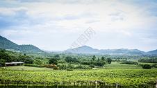 泰国景色图片