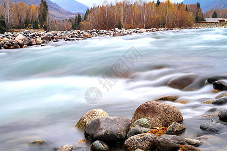 新疆禾木秋色图片