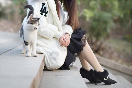女孩与猫咪图片