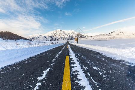 雪地里笔直的公路图片