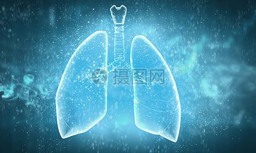 医疗器官图片