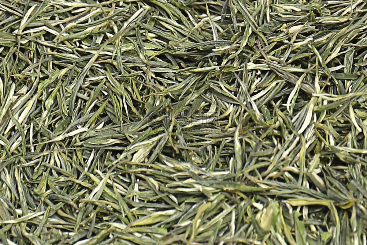 喝白茶什么季节好_白茶知识