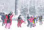 冬天的颜色图片