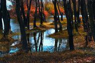 大理海舌湿地公园500807835图片