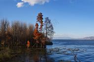 大理海舌湿地公园500807836图片