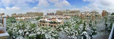 雪后小区的风景图片