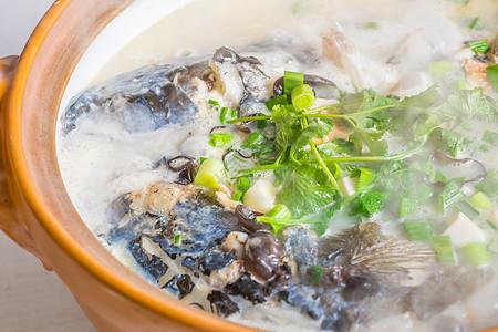 花鲢鱼头汤图片