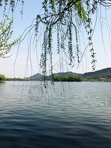 湘湖美景图片