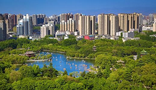 兴庆公园图片