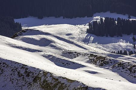 新疆特克斯琼库什台山野雪景森林图片