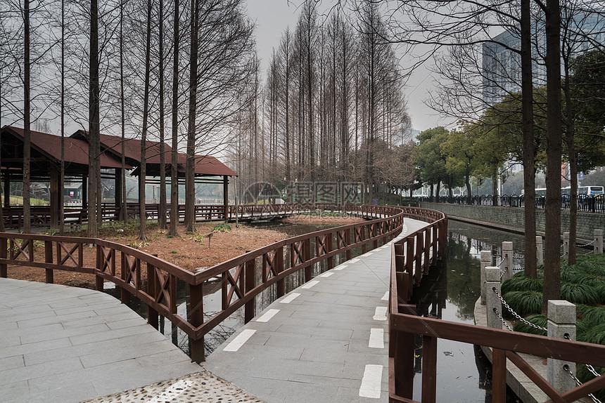 上海塘桥公园休闲步道图片