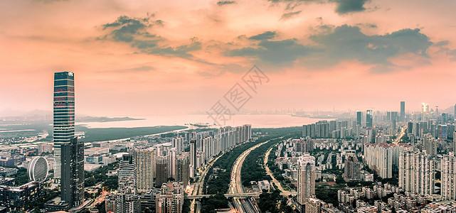 远眺深圳湾图片