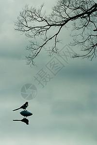 美丽的江南水乡风景倒影图片