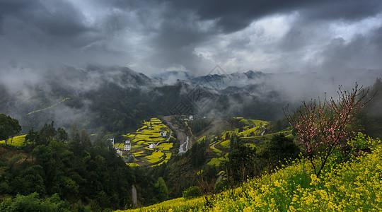被云雾笼罩的油菜花海图片