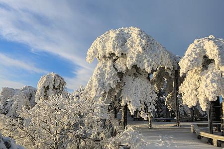 天柱晴雪图片