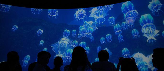 探索大海深处图片
