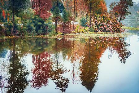 重庆秀湖公园冬季的倒影图片