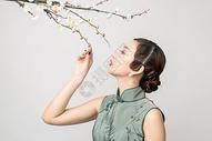梅花树下的旗袍美女图片