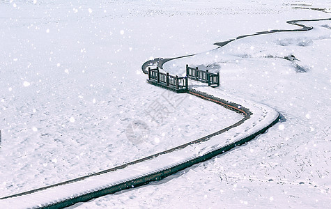 美丽的坝上雪地雪景图片