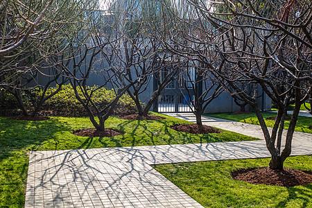 上海雕塑公园植物图片