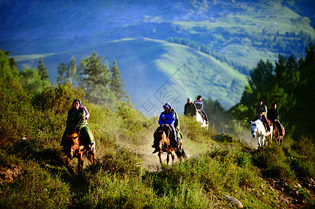 新疆禾木骑马的旅行者图片