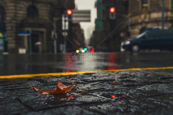雨中城市图片
