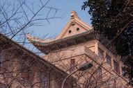 武汉大学樱顶图片