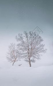 冰雪童话图片