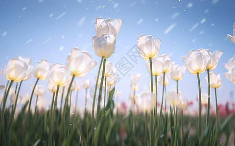 春色创意背景图片